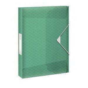 050b4d895abe0 ESSELTE Plastový box s gumičkou Esselte Coulour'Ice zelený ...